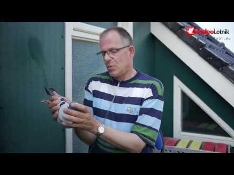 Jacob Poortvliet - Stars of Pigeon Racing Sport [ENG]