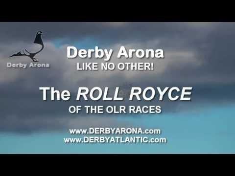 Arona-TENERIFE 2013 - Survival Race - Car Race