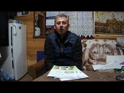Kostorz - Żółkiewicz - młode 2016 na sprzedaż (pakiet 5 szt.) - prezentacja - 01.04.2016r