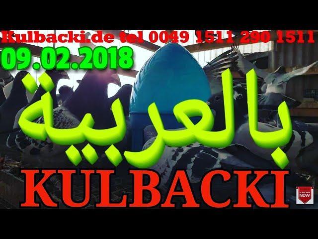 فيديو باللغة العربيةVIDEO IN ARABIC LANGUAGE KULBACKI RACING PIGEONS GERMANY TEL +49 1511 290 1511