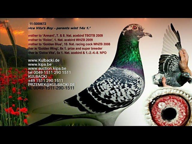 London Birmingham New Market Irland Dublin 27.12.2020, non stop wysyłki bezpośrednio na twój adres!!