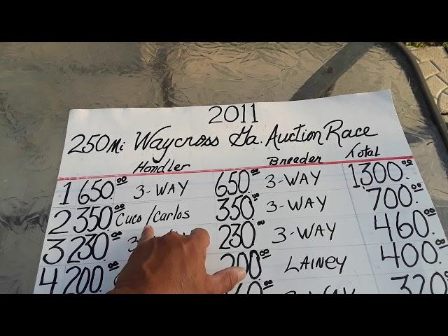 Race Homers ,Old race results from an Auction back on 2011