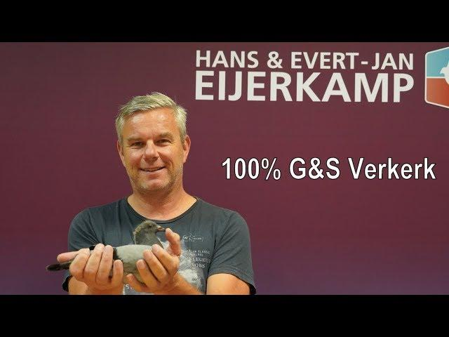Week offer with 100% G&S Verkerk hen