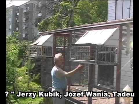 Tadeusz Kapturski - Szczecin