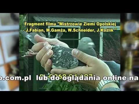 Mirosław Gamża - Leśnica Opolska
