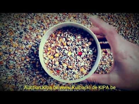 Taubenfutter Karma pigeons food ANIMALFOOD