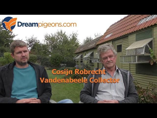 Robrecht Cosijn Dreampigeons Loft Video