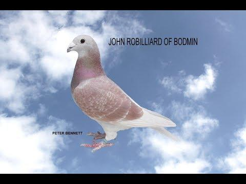 Video 366: John Robilliard of Bodmin (Part 2): Show Pigeons