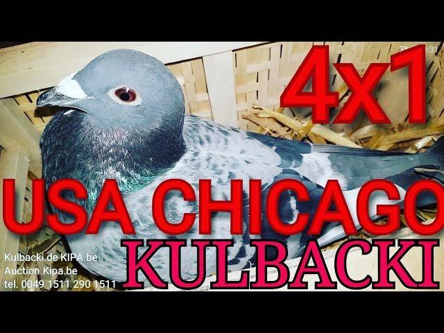 **KULBACKI CHICAGO USA**, I MAKE YOU HAPPY ICH MACHE DICH GLÜCKLICH JA CIĘ ZROBIE SZCZĘŚLIWYM*******