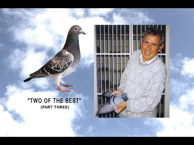 "Video 443: ""Two Of The Best"" No.3: Doug Mitchell / Tom Cummings: Premier Pigeon Racers"