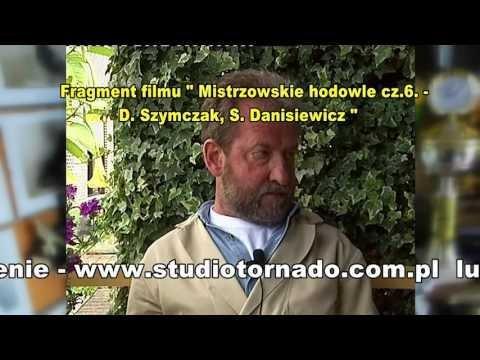 Danny Szymczak - Belgia