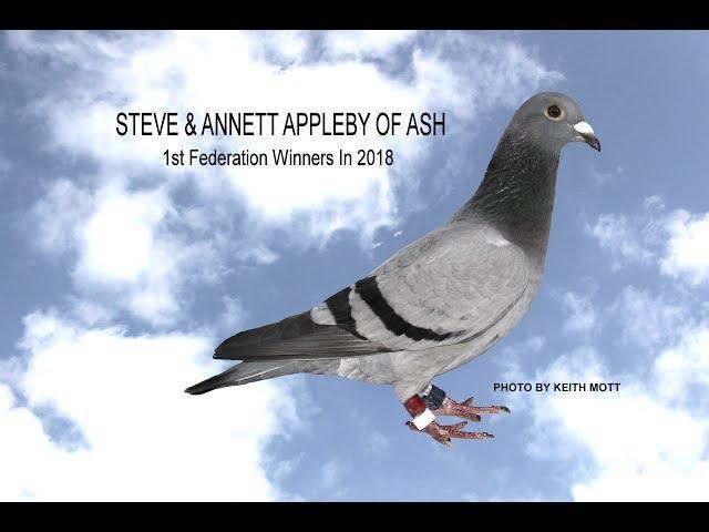 Video 385: Steve & Annett Appleby of Ash: Premier Pigeon Racers