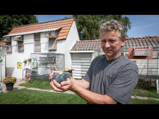 National NPO winners 2019: Bergerac - Walter van der Meulen (+ English subtitles)