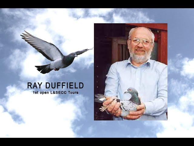 Video 430: Ray Duffield of Croydon: Premier Pigeon Racer