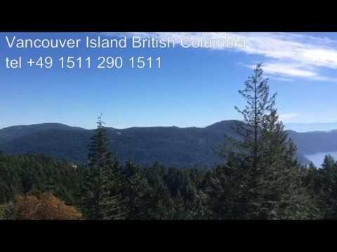 Kulbacki pigeons in Vancouver Island Canada British Columbia we shipping around the world