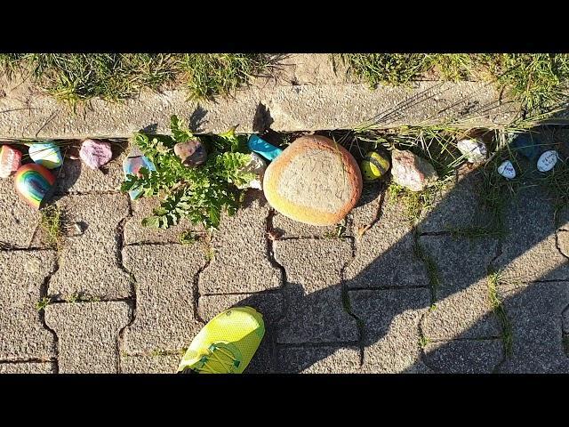 Bunte Steine gegen Corona