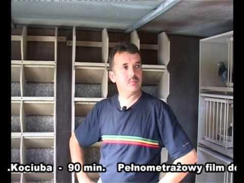 Zbigniew Kociuba - Chojnów