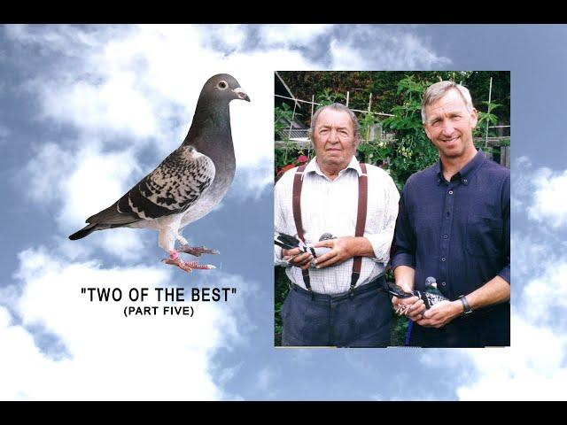 "Video 447: ""Two Of The Best"" No.5: John & Mark Adcock / Derek Squire: Premier Pigeon Racers"