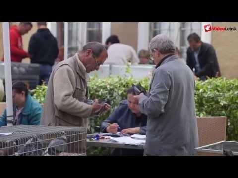 Lot Barcelona 2015 - wkładanie gołębi w Łęknicy