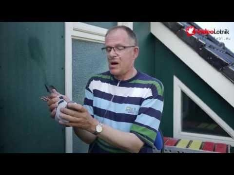 Jacob Poortvliet - Gwiazdy Sportu Gołębiarskiego