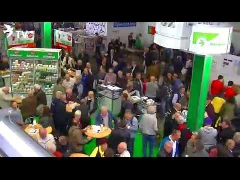 Röhnfried Stand Zeitraffer beim Internationalen TaubenMarkt Kassel 2015 (Brieftauben)