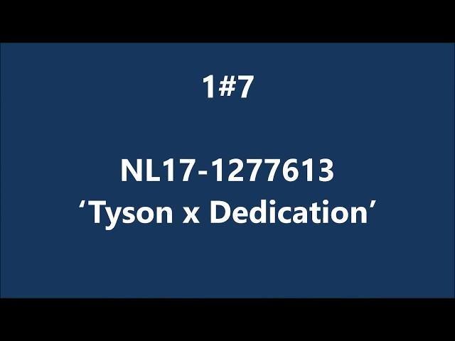 NL17-1277613 Tyson x Dedication