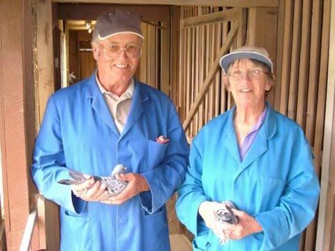 Video 76: Wilf & Janet Reed of Wales: Premier Pigeon Racers