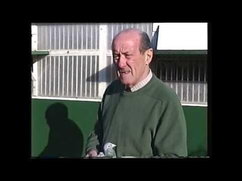 Video 275: Eric Pearson of Godalming: Premier Pigeon Racer