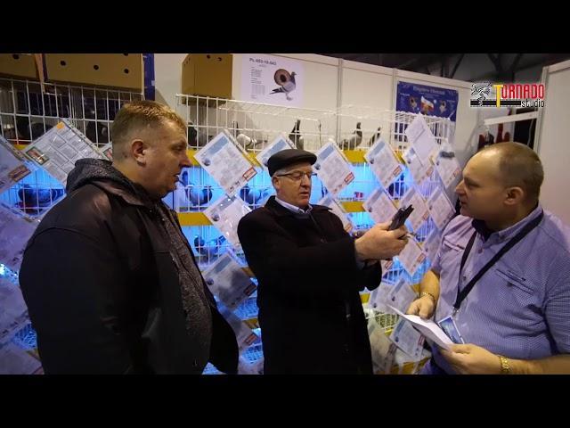 EXPO SOSNOWIEC 2018 Wystawa Gołębi Pocztowych