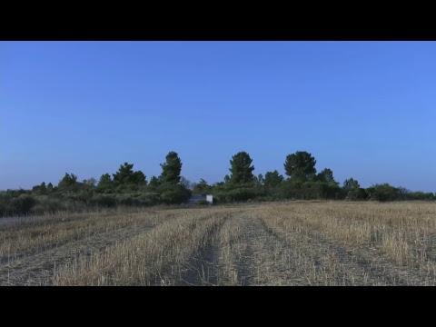 Algarve Great Derby - Solta Vilar Formoso