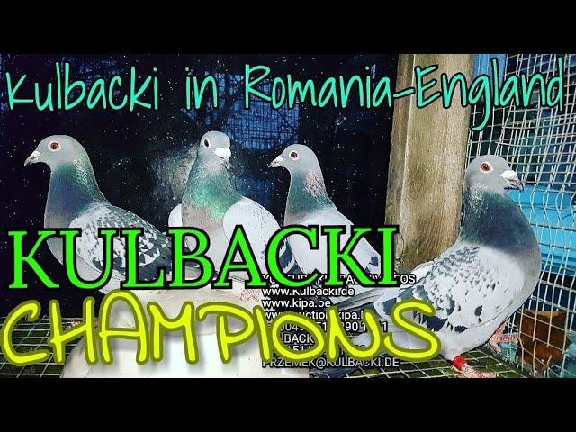 GERMANY-LONDON UK-ROMANIA KULBACKI RACING PIGEONS SPORT 04.01.2018 TEL 0049 1511 290 1511