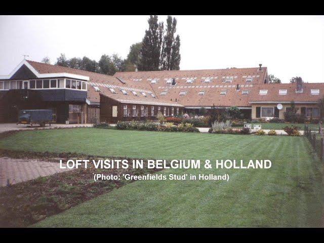 Video 418: Pigeon Loft Visits In Belgium & Holland: Premier Pigeon Racers