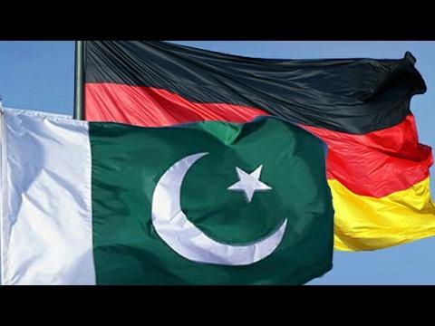 Racing pigeons of Kulbacki in Pakistan Moje gołębie w Pakistanie najlepsze lotniki narodowe