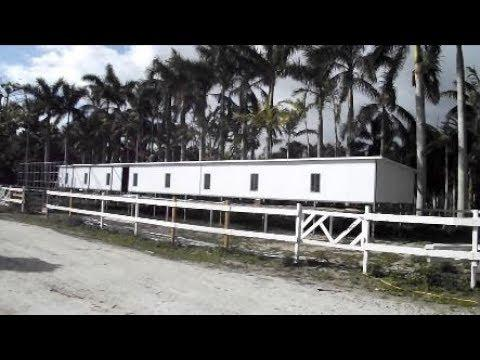 Florida Pigeon Derby - One Loft Pigeon Race