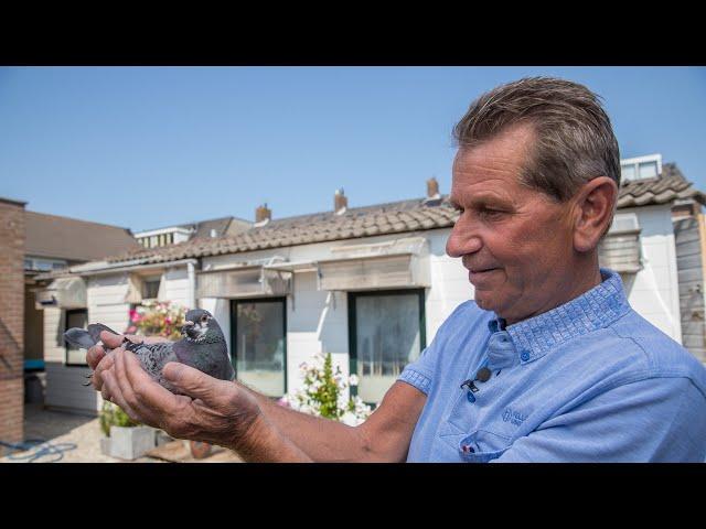 Vainqueurs nationaux NPO 2020: Bergerac - Wim Schaddé van Doorn, Rijnsburg