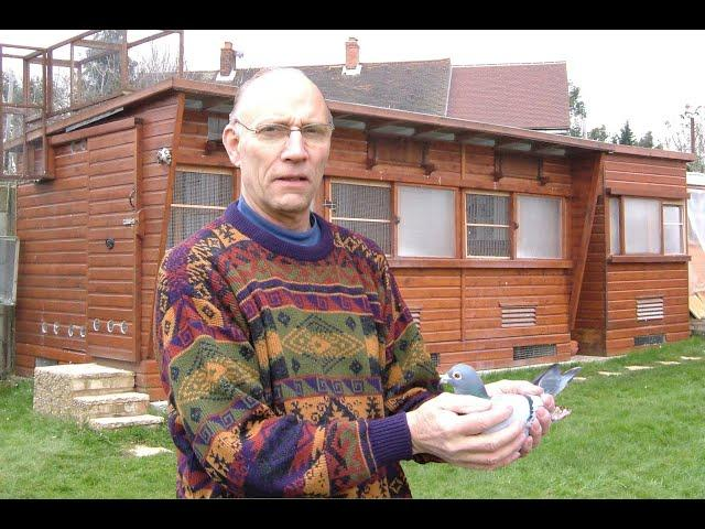 "Video 456: Peter Taylor ""The Full Monty"" Photo Show: Premier Pigeon Racer"