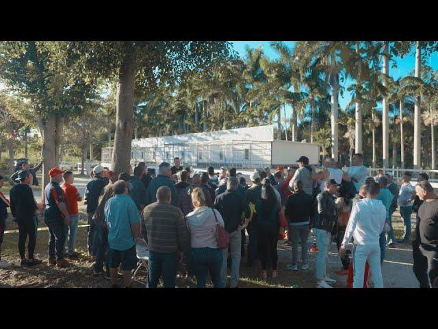 Florida Pigeon Derby 350 Mile Race 2019
