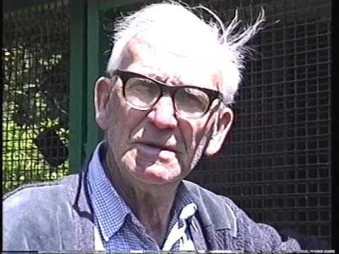 Video 98: Tony Dann / Wally Dann: Premier Pigeon Racers