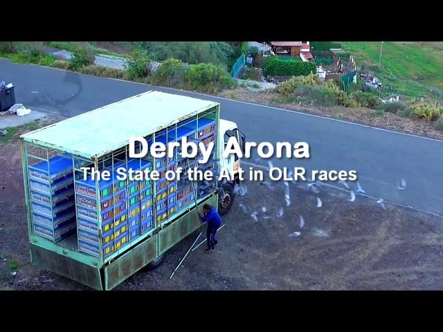 CAR RACE-2 Derby Arona-TENERIFE 2018