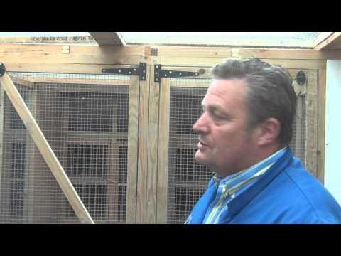 EXCEPTIONAL RACING PIGEONS - Premier Stud UK