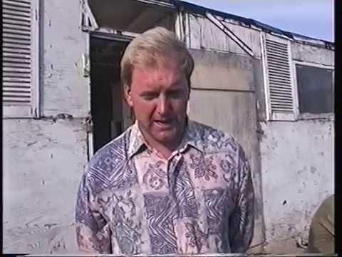 Video 154: Steve Hadfield of the UNC: Premier Pigeon Racer