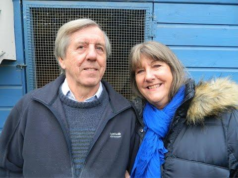 Video 347: Mick & Lyn Chaplin of Woking: Pigeon Photo Show