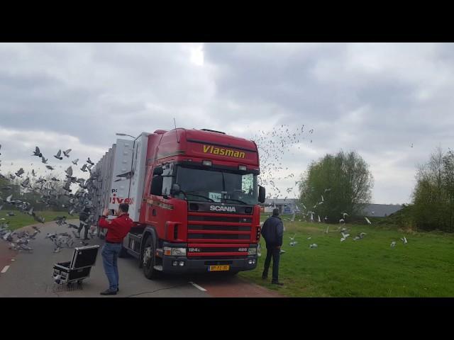 Lossing Duiven Afdeling 11 Friesland in Duiven (13:00 Groep Groen)