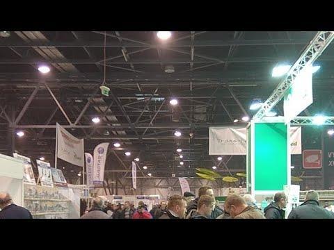 ExpoGołębie w ExpoSilesia 2019 (niedziela)