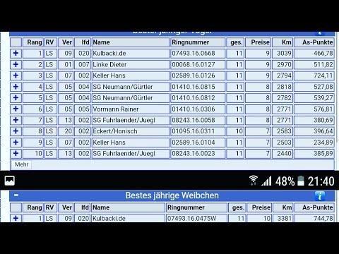 Kulbacki.de lot race number 12 , zapraszam na lot live na zywo 2 mistrz oddzialu po 12 locie