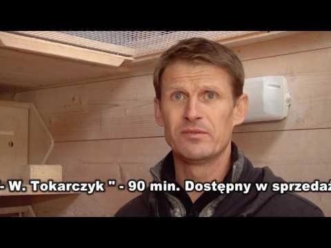 KWARTET LOT Tokarczyk Wiesław - w gołębniku lotowym.