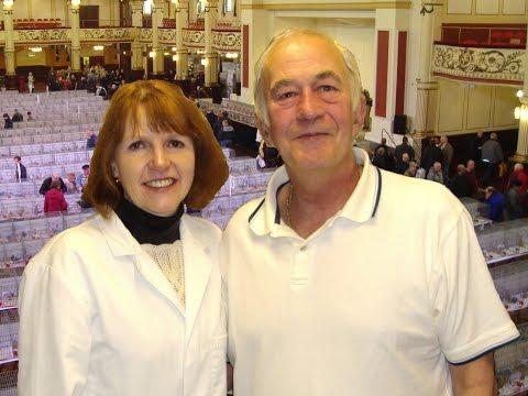 Video 337: South West SR Society Open Show 2016: Show Pigeons