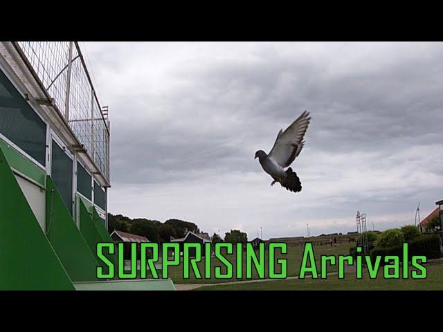 Vlog #66  SURPRISING Arrivals From Two Races 618 and 298km