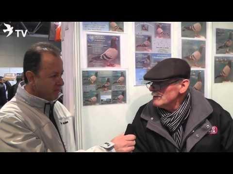 Hans Hirn im Kurzinterview mit Alfred Berger auf der EXPOGołębie in Polen 2016 (Brieftauben)