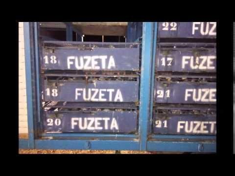 1º Treino Algarve Great Derby 7KM